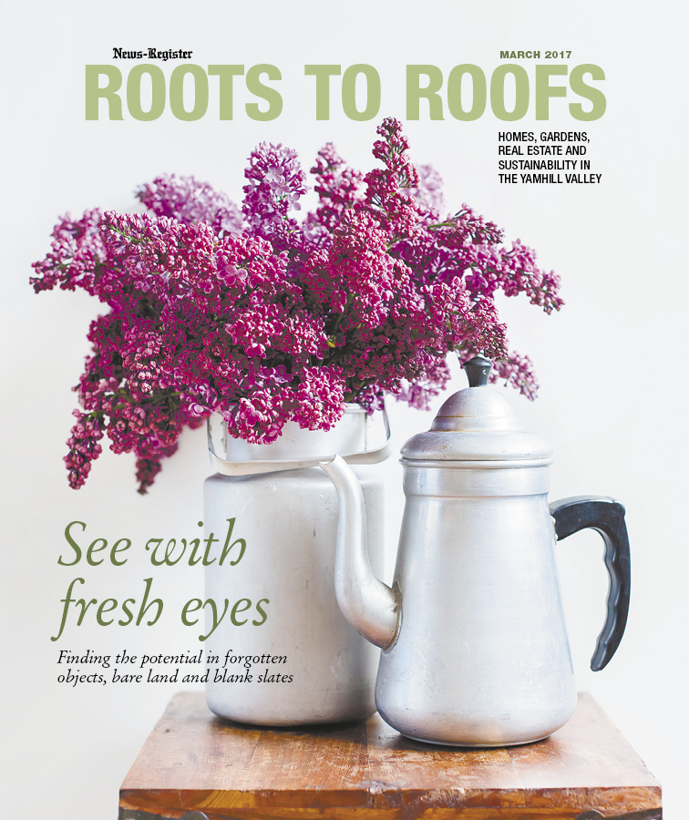 Roots to Roofs March 2017