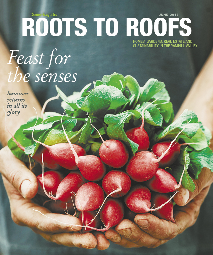 Roots to Roofs June 2017