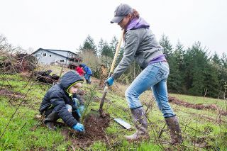 Marcus Larson/News-Registe##Siobhan Skaer and her son, Daniel, 5, work together to plant trees at Goose Pond Farm near Yamhill. More than 50 boy and girl scouts and their parents planted Douglas fir seedlings Saturday.