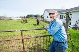 Marcus Larson/News-Register##Longtime Dayton resident Wayne Beckwith talks about his love for working with mules. He'll show them off Saturday at Farm Fest, an annual plowing competition at the Yamhill Valley Heritage Center.