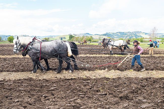 Marcus Larson/News-Register##LaDene Scott and her husband Jonathan Jude plow their section of field during the 2015 Farm Fest. The annual event returns this Saturday.