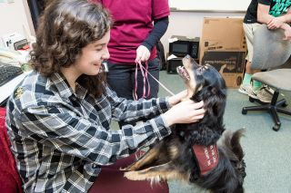 Marcus Larson/News-Register##Student Christina Godinho visits with Meah at Linfield College. The certified therapy dog partners with Cyndi Mitchell in the Paws for Love program.