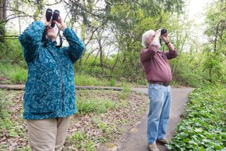 Marcus Larson/News-Register##Diane Trainor and Paul Sullivan spend a Monday morning hanging out with the birds at the Rotary Nature Preserve at Tice Woods in McMinnville.