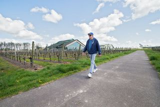 Marcus Larson/News-Register##Larry Hood walks along the path that circles through the vineyards on the Evergreen Aviation Museum campus. The paved path is walkable in all weather.