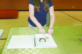 Starla Pointer / News-Register##Maria Martinez lists some of the animals found in Alaska, such as the caribou, during the State & Art Show at St. James Tuesday. The fifth-grader hopes to visits Alaska s Tongass National Forest someday.