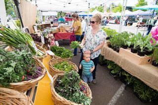 Marcus Larson/News-Register##McMinnville Farmers Market.