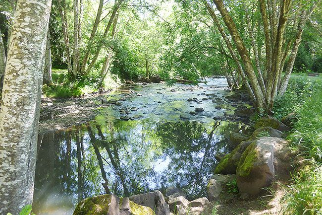 Starla Pointer/News-Register##Cool and inviting, Baker Creek meanders through Ed Grenfell Park west of McMinnville. The water sounds add to the ambiance of the park.