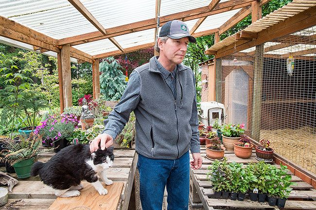 Marcus Larson / News-Register##John Castle and Dewdrop in one of Castle's small greenhouses. He enjoys propogating plants here. Dewdrop likes watching the chickens in the adjacent coop.