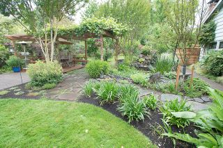 "Marcus Larson/News-Register##Strategic placement of plants and pavers divides the garden into a series of ""rooms."""