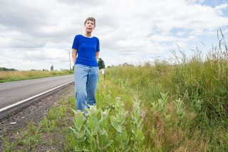 Marcus Larson/News-Register##Susan Aldrich-Markham locates a patch of milkweed near McMinnville. The plant is important to the survival of the monarch butterfly.