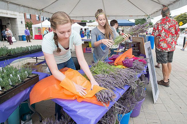 Marcus Larson/News-Register##Lavender Festival volunteers Diana Lewis and Abby Durrell work to create bouquets of lavender for visitors to purchase.