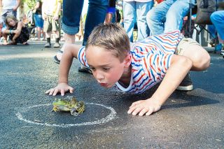 Marcus Larson/News-Register##Chase McMullen gets extra low to entice his frog Jumper to take his first jump by blowing on the amphibian. Yamhill's 62nd Derby Days