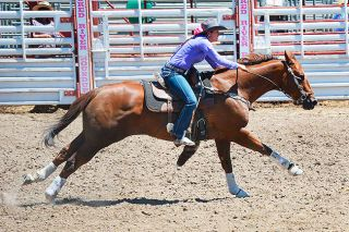 Courtesy of Sage O'Loughlin ##