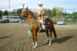 Submitted photoA champion gelding with his ribbon. The rider is wearing the traditional Peruvian gear of whites, poncho, scarf and woven hat. The attire is usually mandatory for show, although a blazer may be worn in some classes.