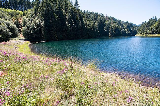 A half-hour from McMinnville in the Coast Range, Haskins Creek Reservoir is the smaller of two sources of water for the city of McMinnville.