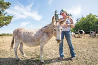 Rockne Roll/News-Register##Jessica Whiting, here with Annabelle the donkey, has loved animals since childhood and has taken in a variety of species on her farm near Carlton. She says being with them is like therapy.