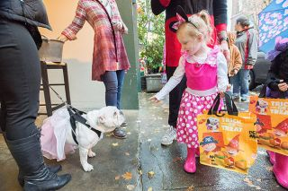 Marcus Larson/News-Register file photo##Alexa Jensen, dressed as Minnie Mouse, waves at Stella the fairy bulldog as she trick-or-treats at Accessory Appeal on Third Street last year.