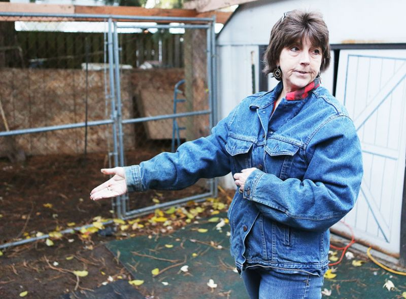 Rockne Roll/News-Register##Kimball Kiess describes the improvements made to her backyard south of McMinnville to help facilitate her animal rescue operation. Kiess holds lost pets found and posted to the Yamhill County Pet Heroes Facebook page until they can be reunited with owners.