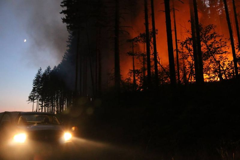 Photo courtesy Oregon Department of Forestry##The Willamina Creek Fire has burned 230 acres