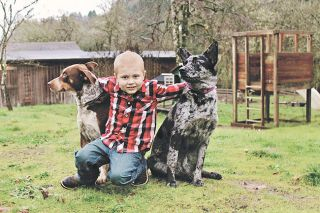 Submitted photo##Brody Miller with his service dog, Libby, and another family dog.