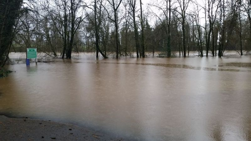 Photo submitted by Jade West##Water continues to rise over the banks of the South Yamhill River at Lafayette Locks county park.