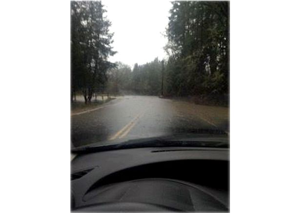 Photo submitted by Sarah Gallup##Taken Monday around 10:30 a.m. on Abbey Road north of Lafayette