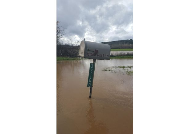 Photo submitted by Kellie Kuberski##Water completely surrounds this mailbox in Willamina.
