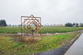 Marcus Larson/News-Register##Land located on Linfield's campus bordered by Keck Drive, Booth Bend Road and Highway 99W is being discussed as a possible site of a future city recreation facility. The property is surrounded by a walking track with a number of student art installations on one end; the field is leased for farming. Albertsons can be seen in the distance.