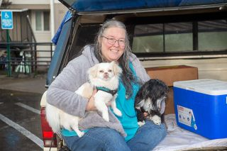 Rusty Rae/News-Register##Candyce Banta with her dogs, Falkor and Ms. Daisy, relax on the tailgate of her truck, where they once lived. They recently moved into an apartment with the help of Champion Team and YCAP.