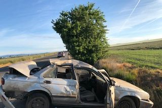 Photos courtesy Oregon State Police##A McMinnville man was arrested following a single-vehicle crash early Sunday morning south of Amity in Polk County.