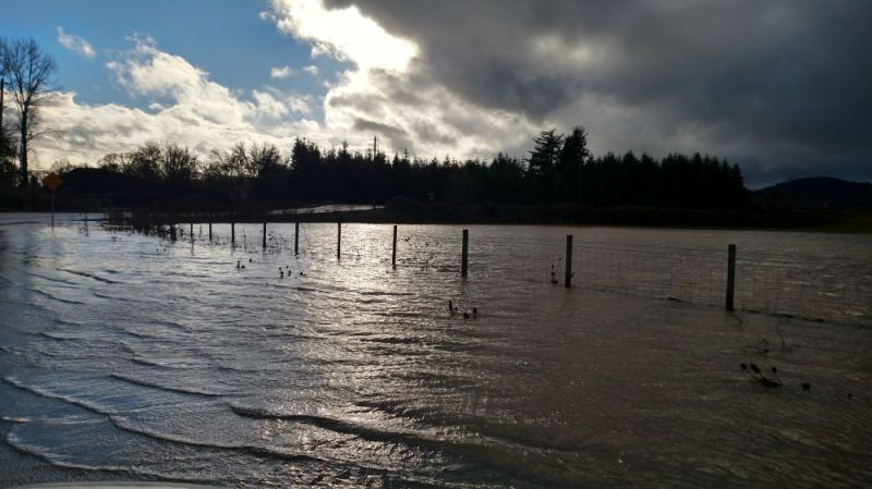 Photo submitted by Kent Roerig##A flooded field on Hill Road near Baker Creek Monday afternoon.